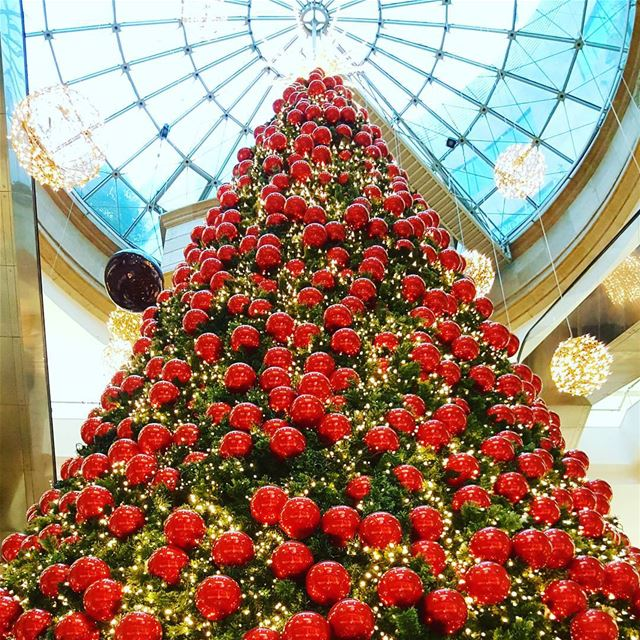 christmas  christmaspirit  christmas_tree  lemall  joy  december  2016 ... (Le Mall, Habtoor)